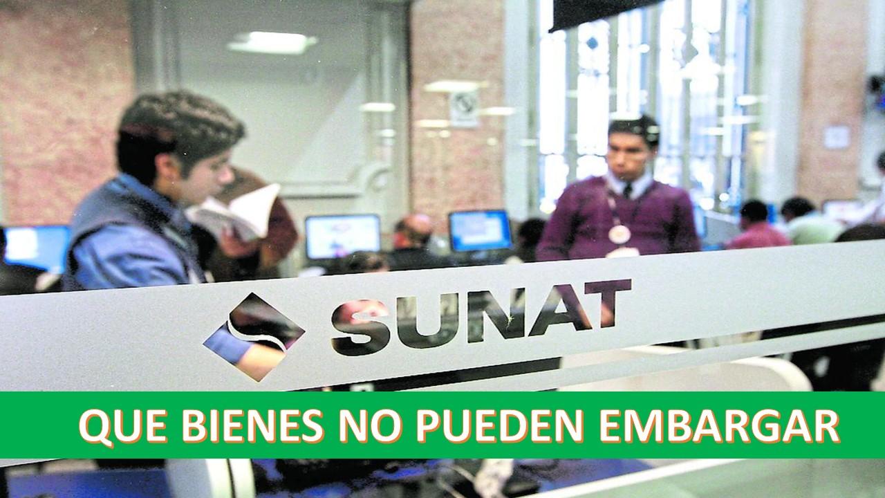 Cobranza Coactiva: ¿Qué bienes son considerados inembargables por SUNAT?